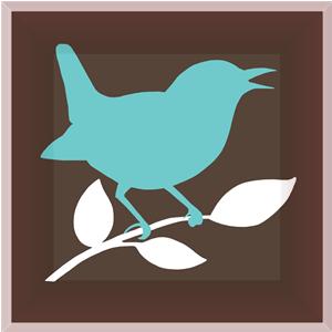Wren Window Cleaning Bird
