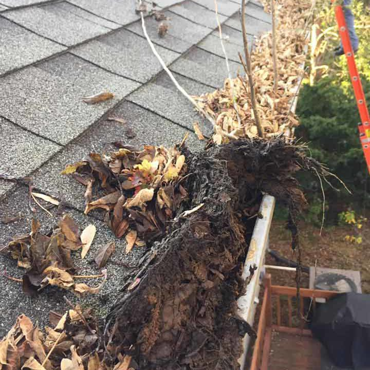 gutter-cleaning-minnesota